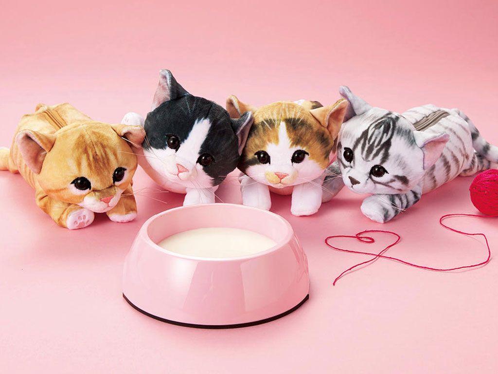 Ces trousses chat font fureur