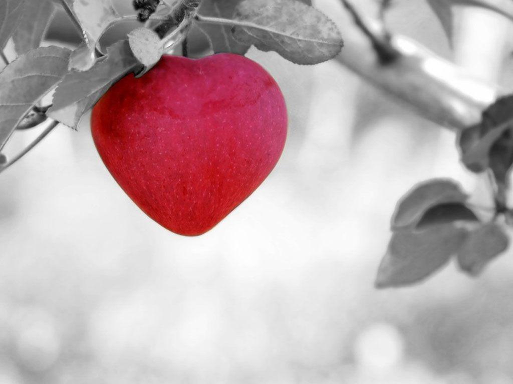 Six aphrodisiaques naturels !