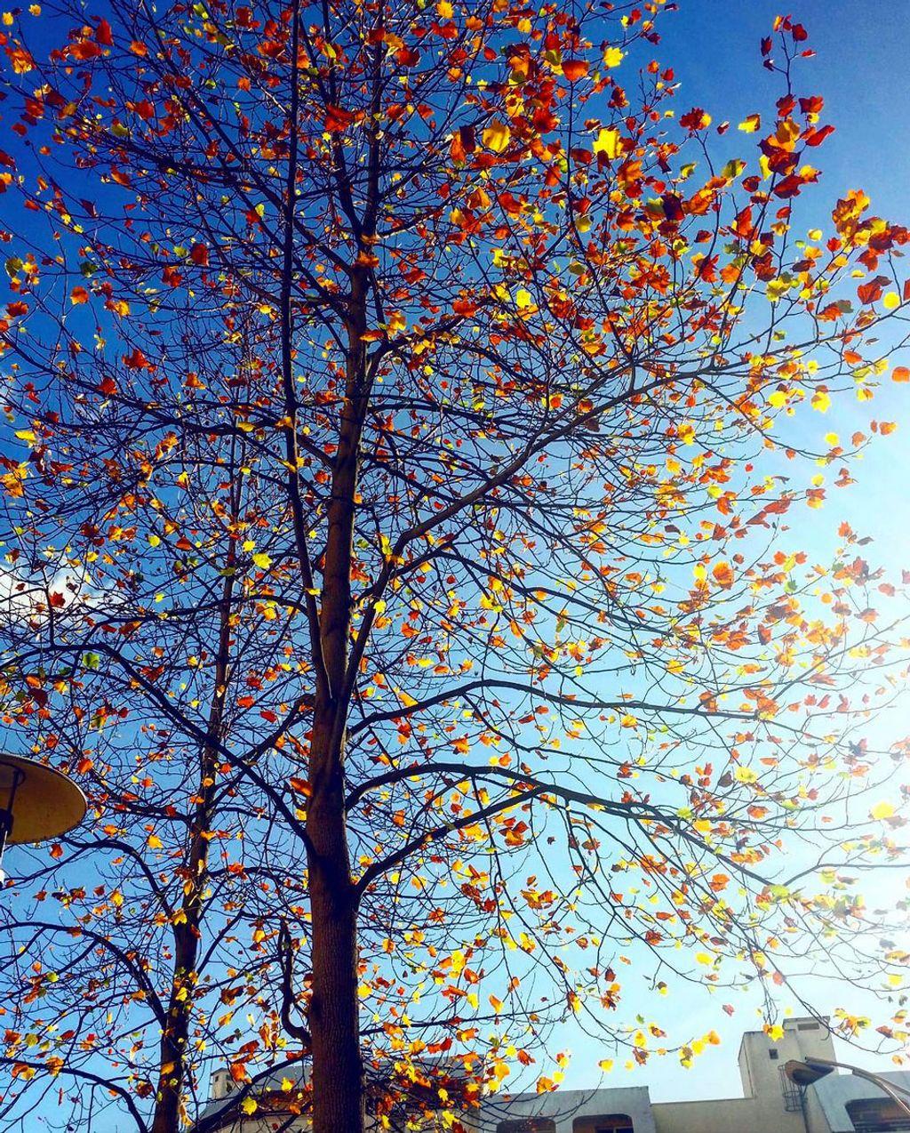 24 bonnes actions à faire au mois de décembre