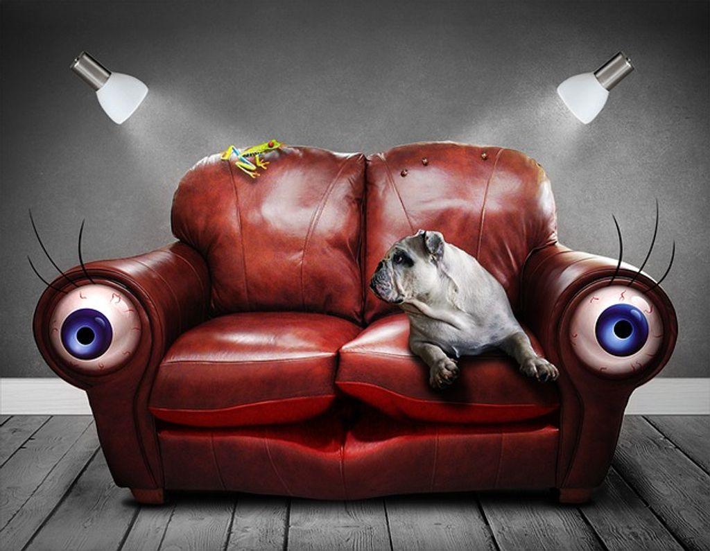 7 choses que je fais devant la télé