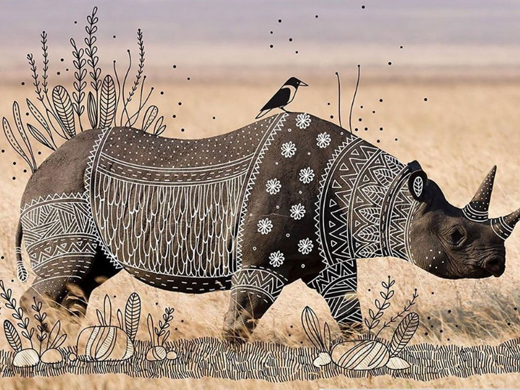 « Animal Doodles » : Rohan Sharad Dahotre sublime des photos d'animaux sauvages