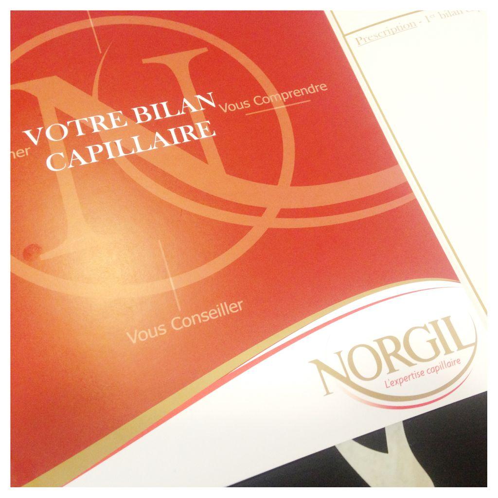 """J'ai testé l'expertise capillaire et le soin """"hypérion"""" chez Norgil"""
