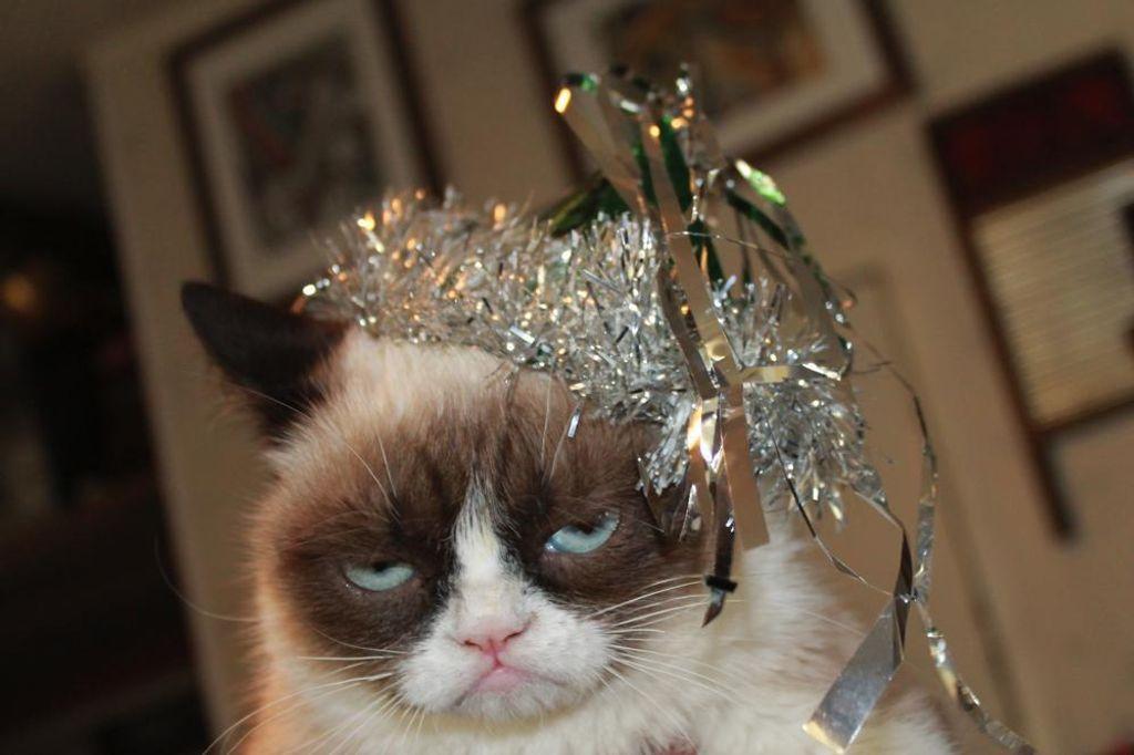 Je n'aime pas fêter le réveillon du nouvel an