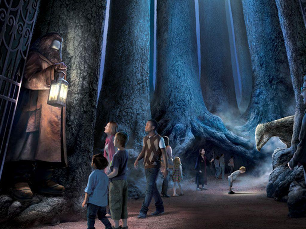 La Forêt Interdite, le nouvel espace des Studios Harry Potter à Londres
