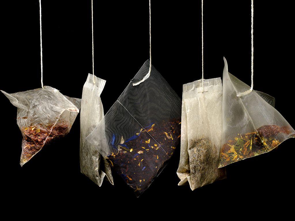 Quel thé choisir ? Voyons ensemble les différences