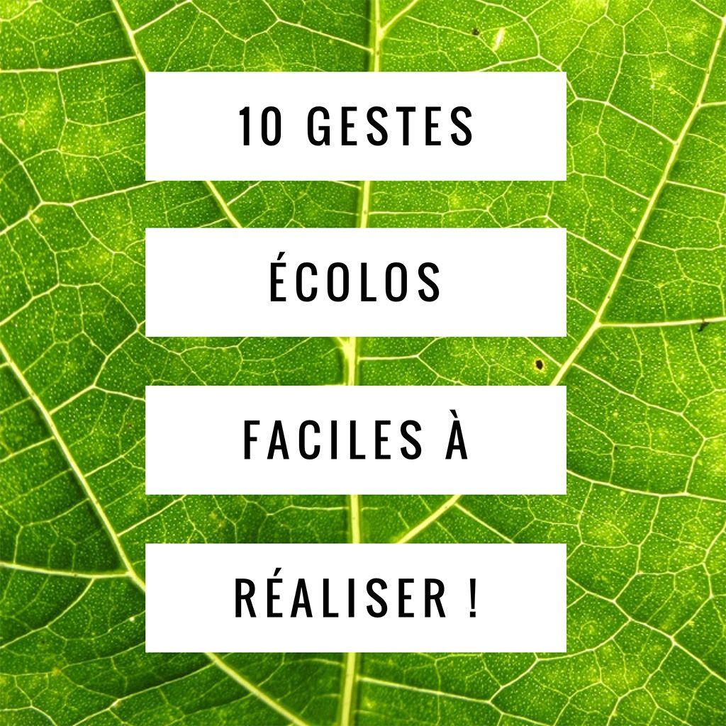 Top 10 des gestes écolos faciles à réaliser