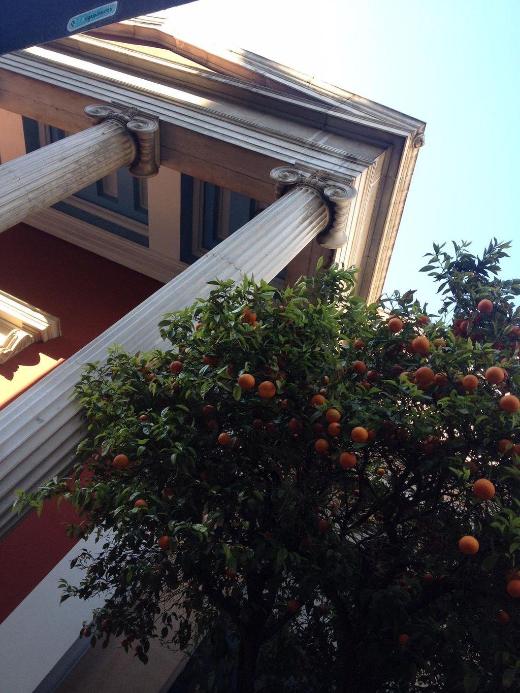 Voir Athènes et vouloir revoir Athènes