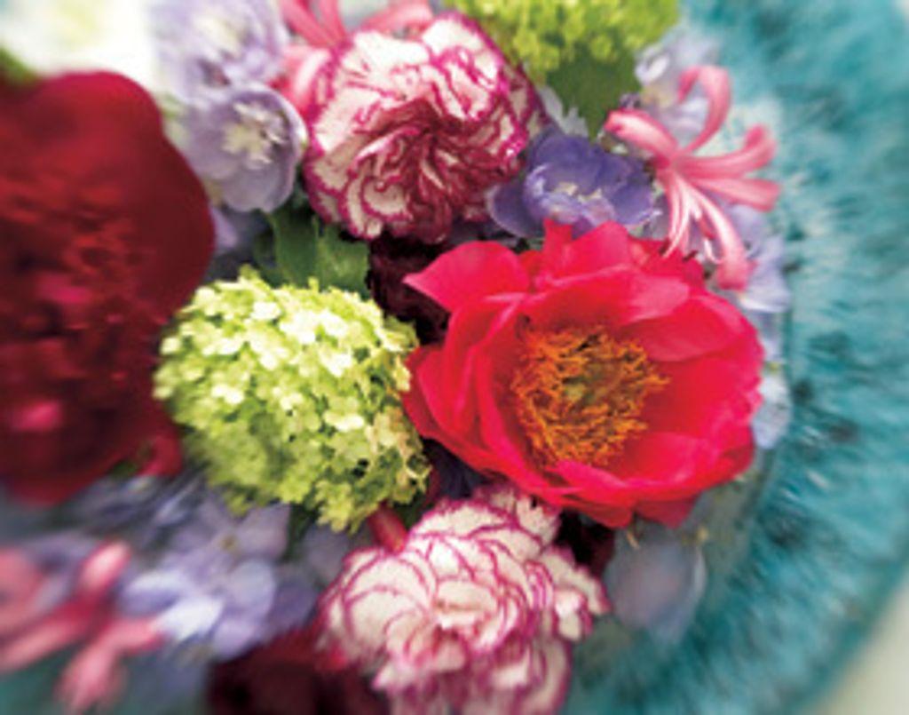 Fleurs de Tricia Guild