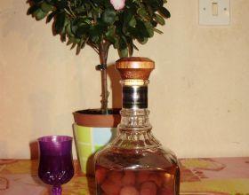 Alcool de fruit au prune sauvage