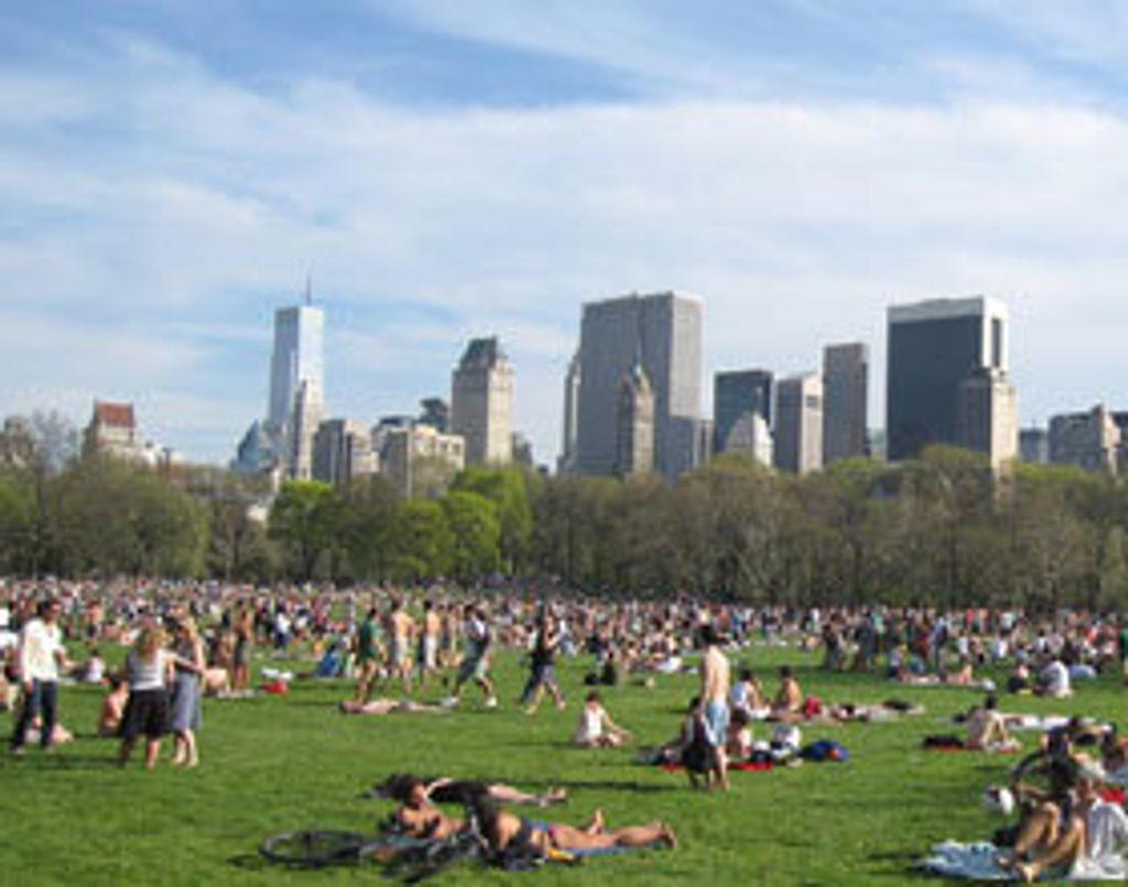 Mon premier brunch dans Central Park!