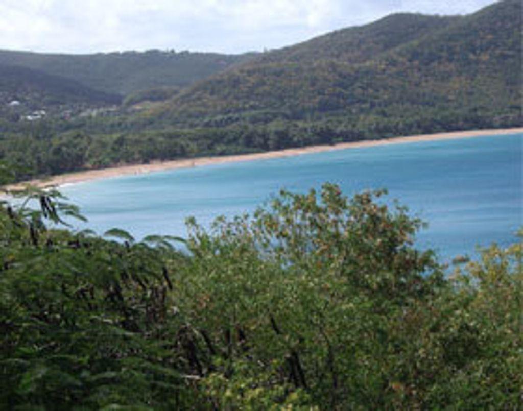Guadeloupe : nature découverte et pédalo !