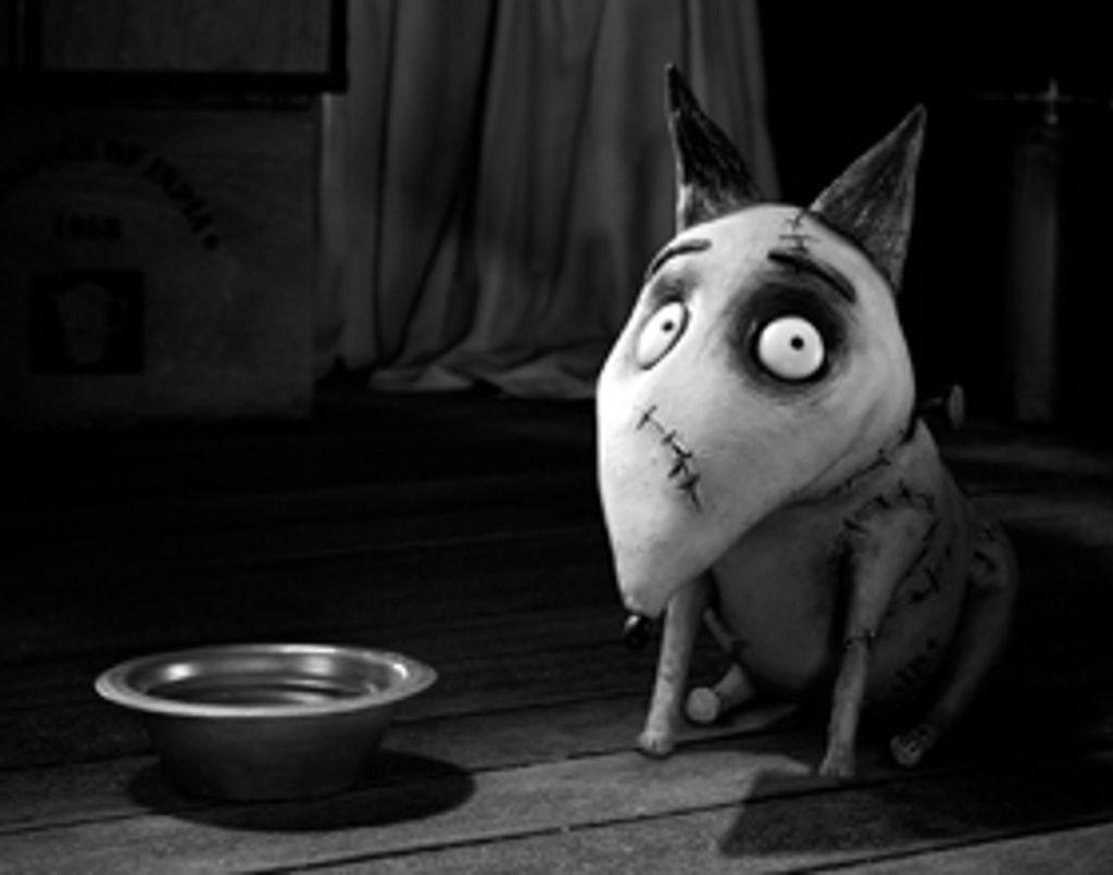 3 bonnes raisons de voir Frankenweenie de Tim Burton