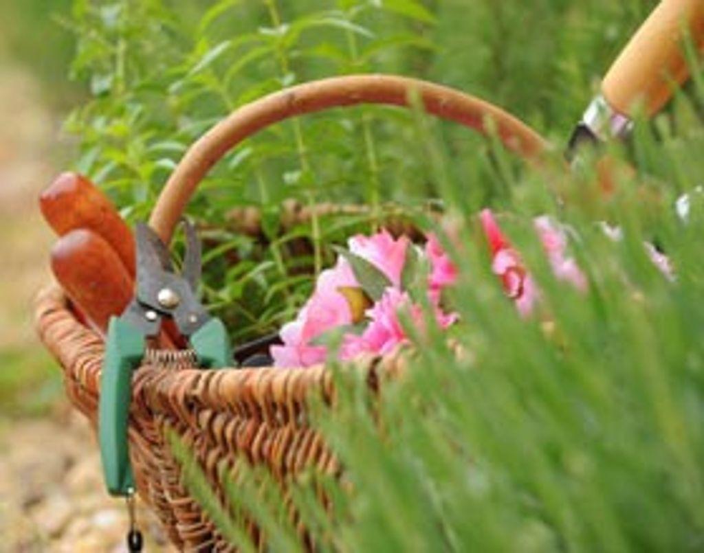 """Dimanche 15 juin : """"Maison, jardins, bricolage : du rêve à tous les prix"""